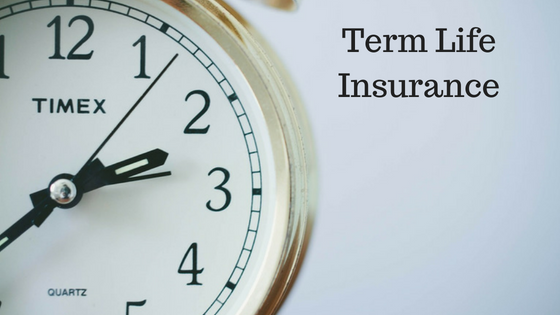 What is a Term Life Insurance